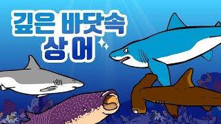 깊은 바닷속 상어 | 상어의 생김새와 특징 | 상어의 종류 | 동물박사★지니키즈