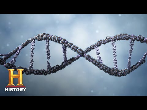 Ancient Aliens: Alien Messages In Our DNA (Season 9) | History
