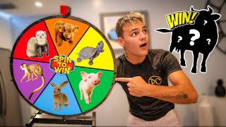 BUYING WHATEVER ANIMAL it Lands On!! - Challenge