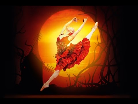 Don Quixote trailer (The Royal Ballet)