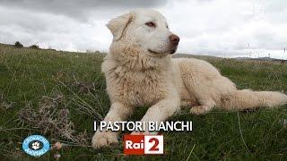 I PASTORI BIANCHI