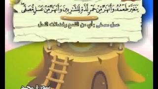 المصحف المعلم الصديق المنشاوي ::: سورة محمد