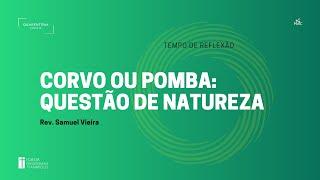 Tempo de Reflexão   09.12.2020   Corvo ou pomba:Questão de Natureza