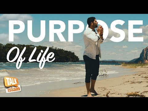 FIND YOUR PURPOSE | The Question Everyone Should Ask