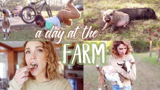 A Day in our Farm Life - Big Family of 10!
