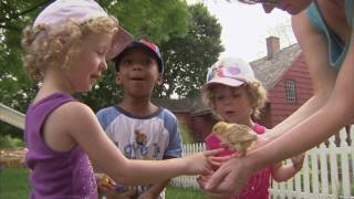 Urban, Farming, Farm, Family Farm, Mushrooms - America's Heartland