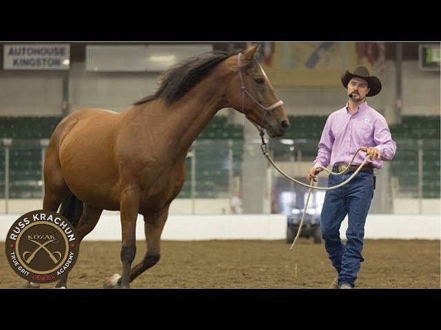 Discussion Round Pen Methodology Lesson 20 - Russ Krachun Kozak Horsemanship