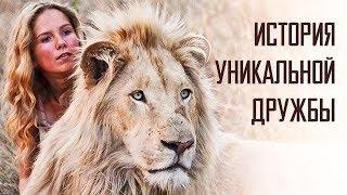 """""""Индустрия кино"""" про семейный фильм """"Девочка Миа ибелый лев"""""""