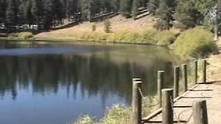 Modoc National Forest Landscapes