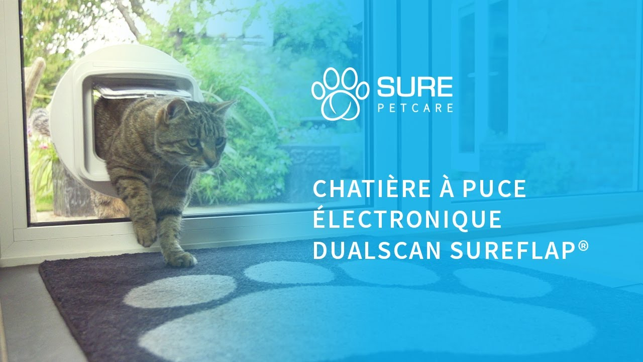 chati re puce lectronique sureflap dualscan youtube. Black Bedroom Furniture Sets. Home Design Ideas