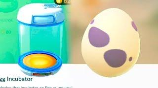 Новая яичная серия. Вылупление яиц. 5, 10, 2 км. Покемон Го Выпуск 115