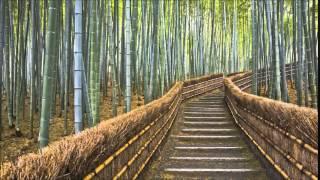 Cristian R: Bamboo Forest (Original Mix)