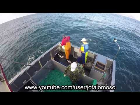 Fishing video,pesca de palangre de fundo Açores / Longline fishing in Azores islands.