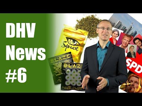 Alles zu Legal Highs | SPD Frankfurt für Legalisierung? | DHV News #6