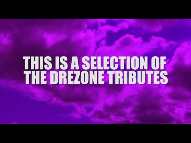 The DreZone: The Prince Tributes
