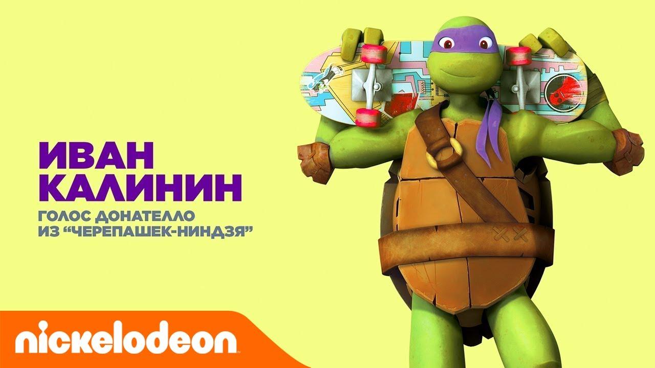 Teenage mutant ninja turtles nickelodeon donatello