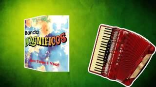 COLETÂNEA FORRÓ DAS ANTIGAS - Só as Melhores - VOLUME 02