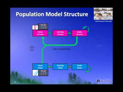 Wildlife Management Principles: Understanding Population Dynamics