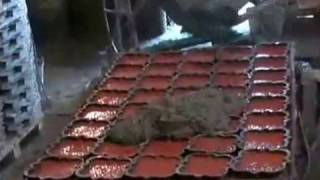 Производство тротуарной плитки(, 2010-05-04T10:22:16.000Z)