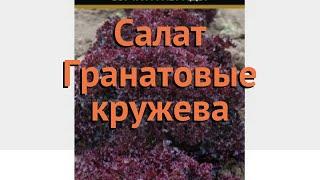 Салат обыкновенный Гранатовые кружева Листовой 🌿 обзор: как сажать, семена салата