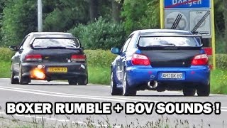 Best of Subaru Impreza Sounds Compilation (WRX sti)