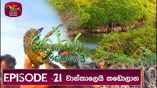 Sobadhara - Sri Lanka Wildlife Documentary | 2019-08-09 | Mangrove (කඩොලාන) Thumbnail
