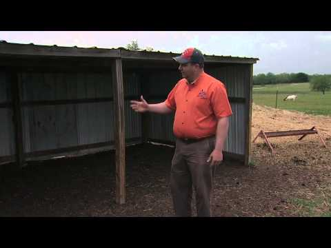 Housing And Shelter Options For Meat Goat Producers