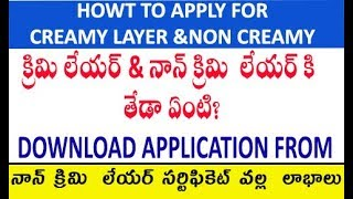 What is the Creamy layer and Non Creamy Layer certificate in telugu by manavidya