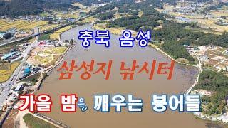 충북 음성 삼성지 낚시터/떡밥낚시/3.단.콘. 조행기