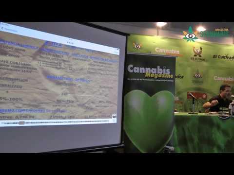 El cultivo orgánico de cannabis - Parte I