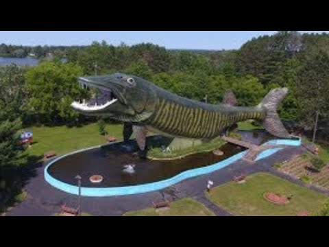 World's Largest Fish And Freshwater Fishing Museum