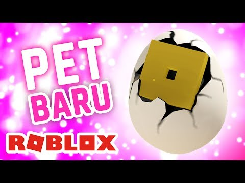 ROBLOX INDONESiA | ADA PET BARU ??  😲