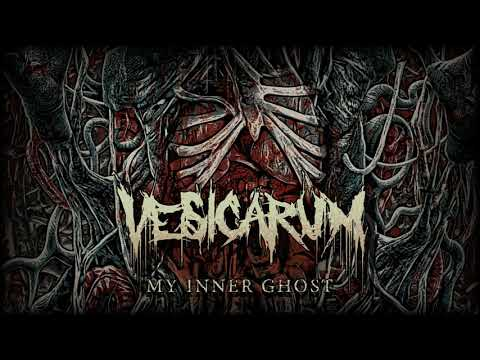 Vesicarum - My Inner Ghost (Visualizer)