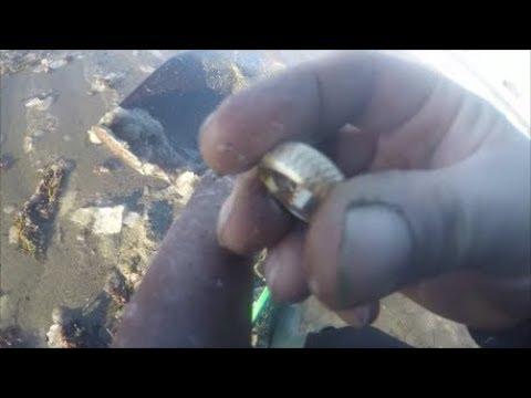Beach Metal Detecting  MORE GOLD! INSANE BEACH HUNTING!