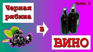 Вино домашнее из черноплодной (черной) рябины. Часть 3.