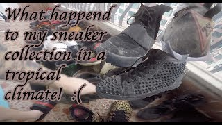 What happened to my sneaker collection in Guangzhou China.