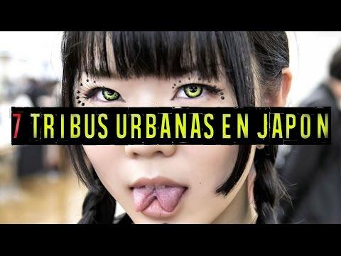 7 TRIBUS URBANAS EN JAPÓN