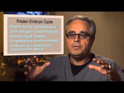 Frozen Embryo Transfer - Beverly Hills, Burbank, Valencia