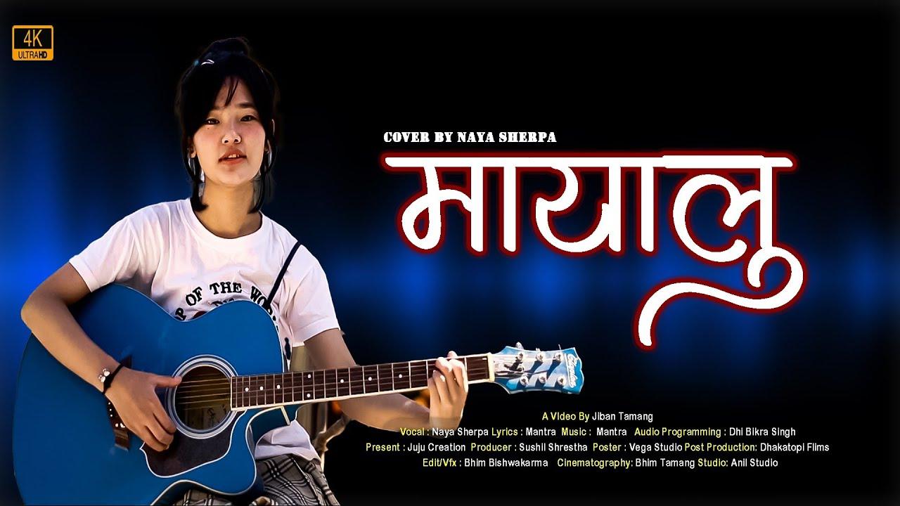 Download Mayalu (मायालु )    Vek X Yabesh Thapa    Cover By Nayu Sherpa    Juju's creation    2020