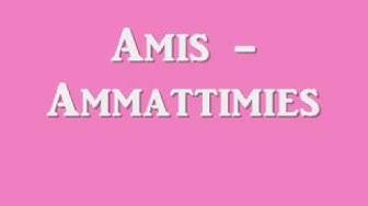 Amis - Ammattimies