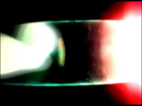 Kelpe - Petrified