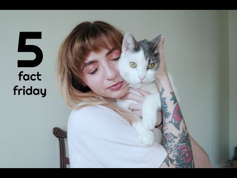 Five Fact Friday! Beauty School Makeup, animal update, Goals for this year