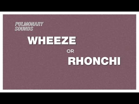 Lung Sounds - Wheeze vs Rhonchi - what is the difference ?
