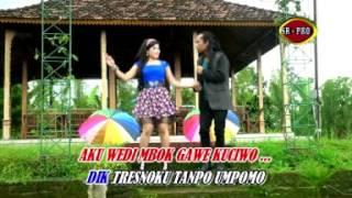 Tresno Marang Rondo - Arya Satria feat. Erin Sabrina (Official Music Video)