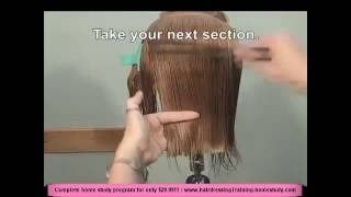 Free Hairdressing Lesson - Hairdressingtraining-homestudy.com - Women's Straight Cut