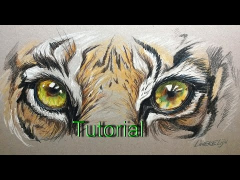 Drawing Realistic TIGER Eye for beginners - color pencil on