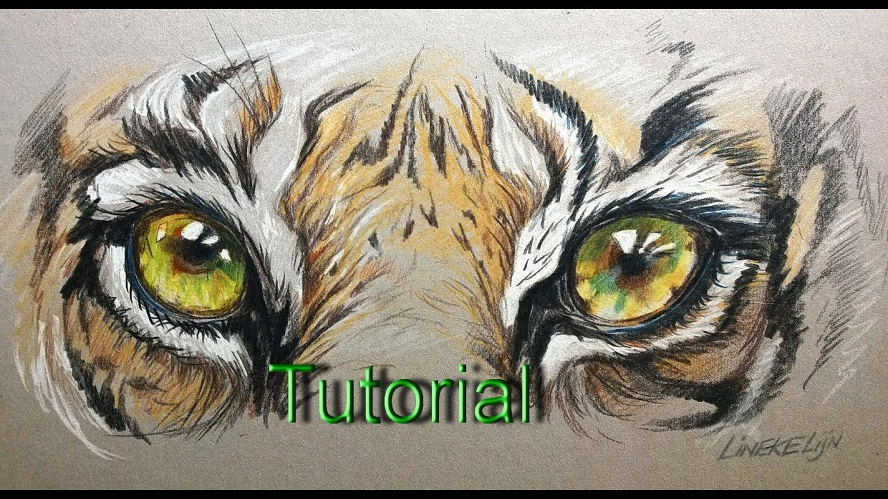 how to draw with colored pencils for beginners