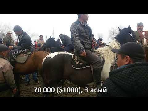 Озгон мал базары, аттар 300 мин сомго чейин. 12\\03\\18 Скотный рынок, Узген  кони до 300 000 сомов