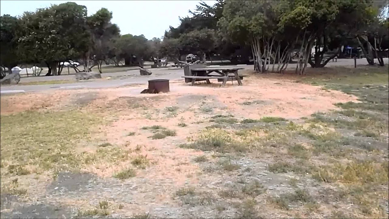 Pismo State Beach North Campground Site 50