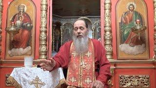 Можно ли православным есть кошерные продукты и халяль? (прот. Владимир Головин, г. Болгар)